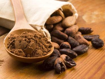 Cocoa improves cognitive health