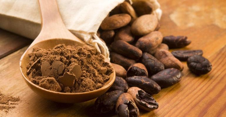 Il cacao migliora le funzioni cognitive