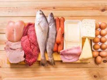 Oloproteica diet