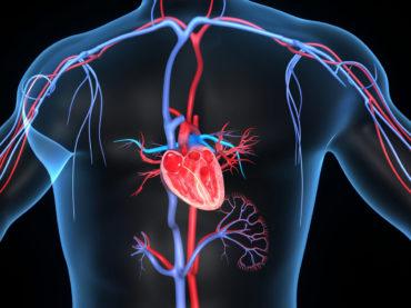 CORSO:  Terapie  Chetogeniche e Protocolli nelle Malattie Metaboliche e Cardiovascolari
