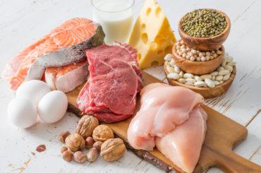 Focus: Oloproteic Diet