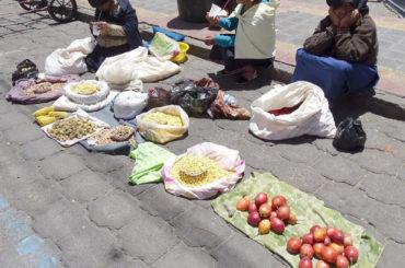 Focus: Piante alimentari dell'America latina